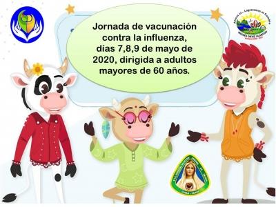 Influenza Mayo